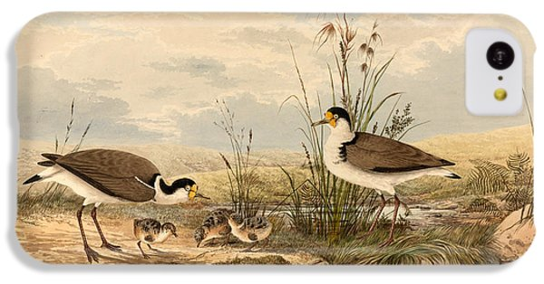 Lapwing iPhone 5c Case - Cayley Masked Lapwing. Vanellus Miles by Neville Henry Penniston