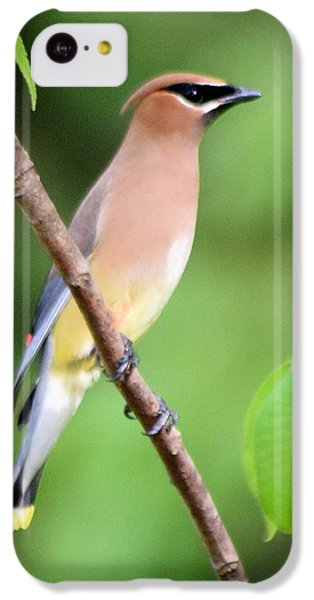 Cedar Wax Wing Profile IPhone 5c Case by Sheri McLeroy