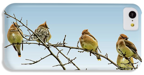 Cedar Waxwings IPhone 5c Case by Geraldine Scull