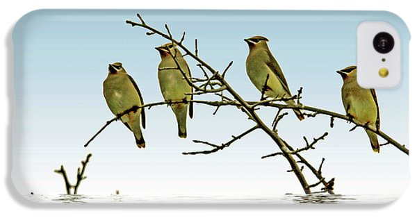 Cedar Waxwings On A Branch IPhone 5c Case by Geraldine Scull