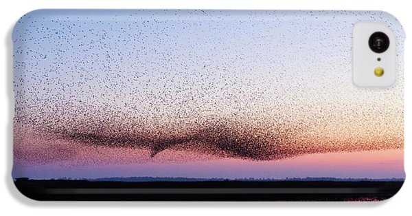 Starlings iPhone 5c Case - Chaos In Motion - Bird Of Many Birds by Roeselien Raimond