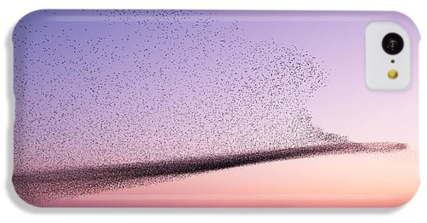 Starlings iPhone 5c Case - Chaos In Motion - Starling Murmuration by Roeselien Raimond