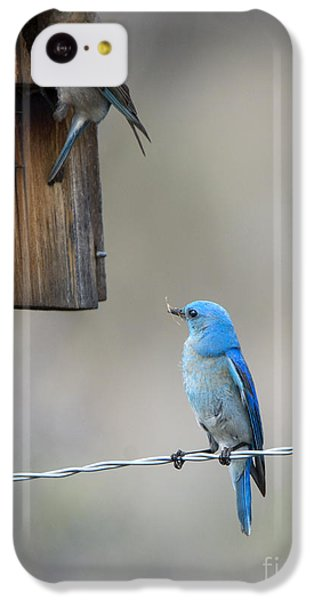 Checking The Nest IPhone 5c Case by Mike Dawson