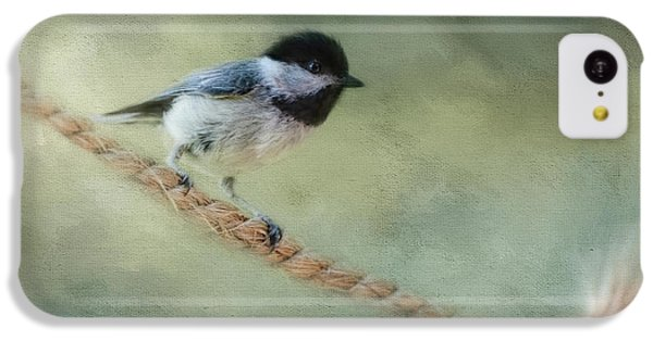 Chickadee At The Shore IPhone 5c Case by Jai Johnson