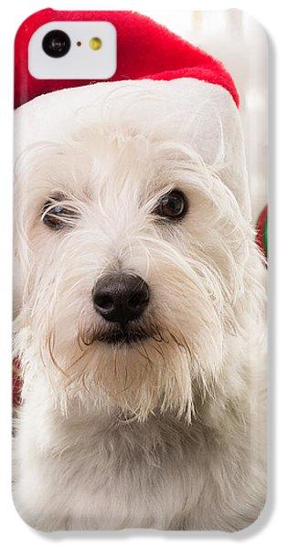 Elf iPhone 5c Case - Christmas Elf Dog by Edward Fielding