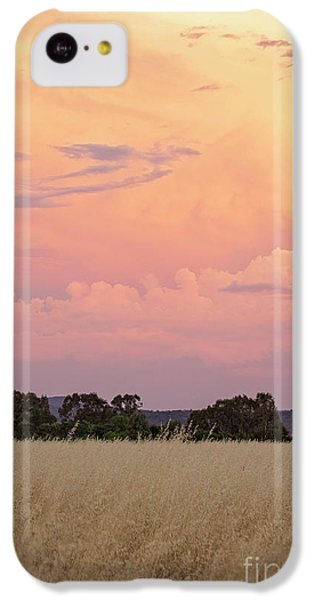 IPhone 5c Case featuring the photograph Christmas Eve In Australia by Linda Lees