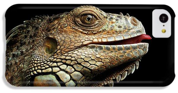 Close-upgreen Iguana Isolated On Black Background IPhone 5c Case