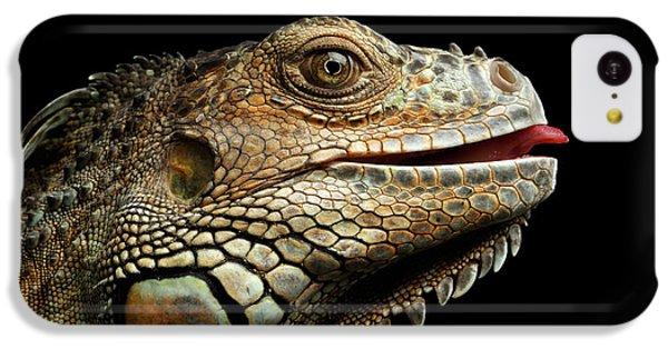 Close-upgreen Iguana Isolated On Black Background IPhone 5c Case by Sergey Taran