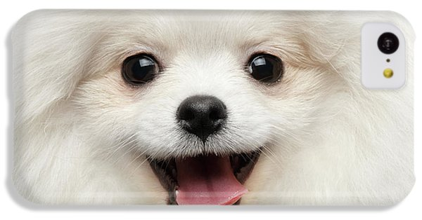 Closeup Furry Happiness White Pomeranian Spitz Dog Curious Smiling IPhone 5c Case