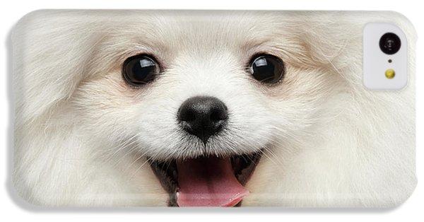 Dog iPhone 5c Case - Closeup Furry Happiness White Pomeranian Spitz Dog Curious Smiling by Sergey Taran