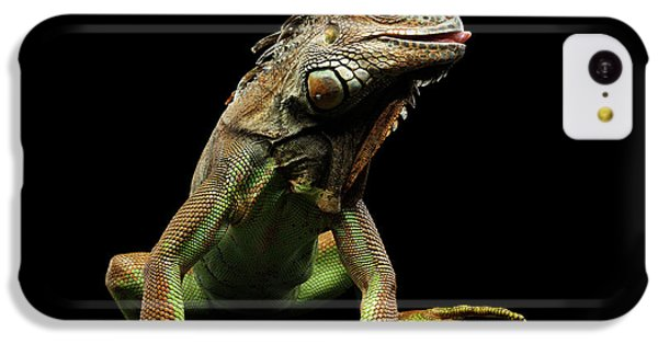 Closeup Green Iguana Isolated On Black Background IPhone 5c Case by Sergey Taran