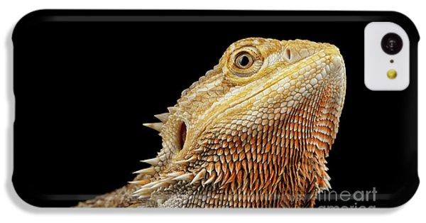 Closeup Head Of Bearded Dragon Llizard, Agama, Isolated Black Background IPhone 5c Case