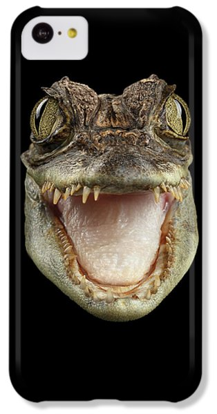 Closeup Head Of Young Cayman Crocodile , Reptile With Opened Mouth Isolated On Black Background, Fro IPhone 5c Case