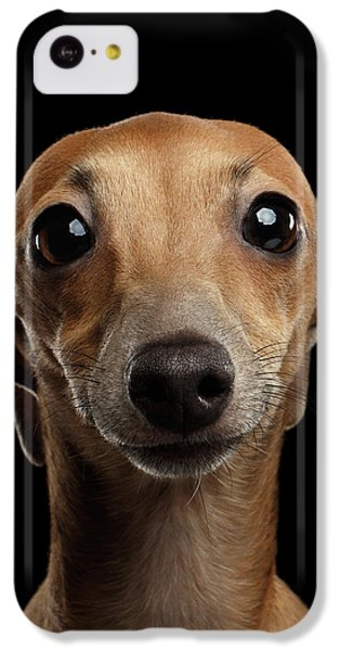 Closeup Portrait Italian Greyhound Dog Looking In Camera Isolated Black IPhone 5c Case