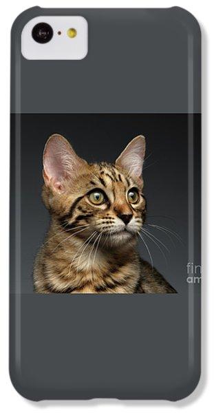 Closeup Portrait Of Bengal Male Kitty On Dark Background IPhone 5c Case by Sergey Taran