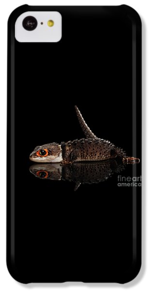 Closeup Red-eyed Crocodile Skink, Tribolonotus Gracilis, Isolated On Black Background IPhone 5c Case