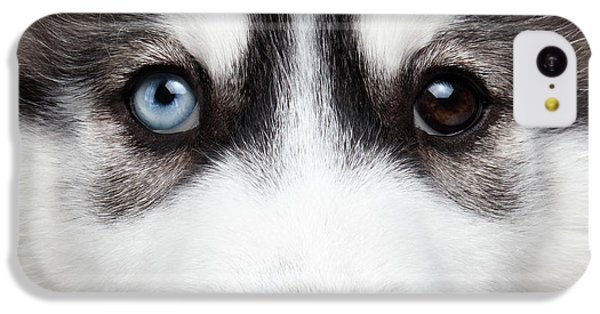 Closeup Siberian Husky Puppy Different Eyes IPhone 5c Case