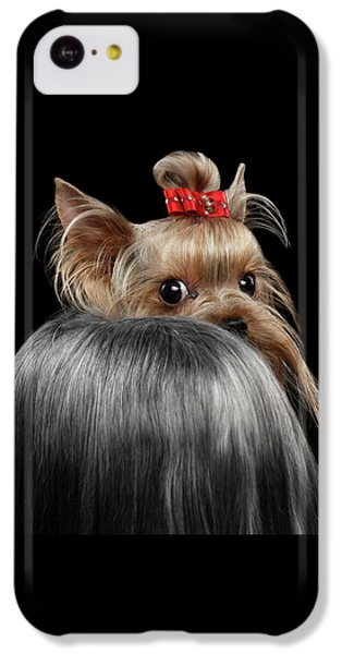 Dog iPhone 5c Case -  Closeup Yorkshire Terrier Dog, Long Groomed Hair Pity Looking Back by Sergey Taran