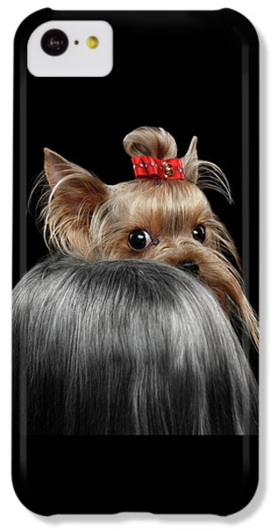 Closeup Yorkshire Terrier Dog, Long Groomed Hair Pity Looking Back IPhone 5c Case