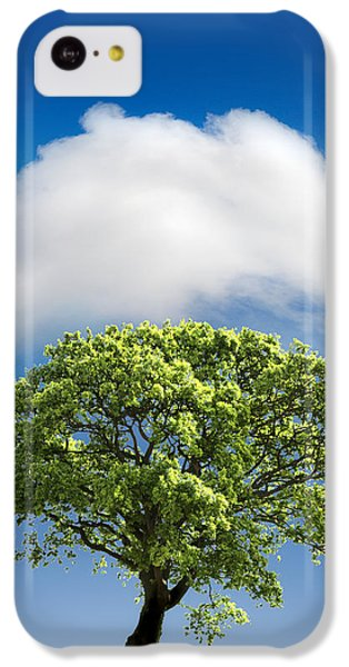 Rolling Stone Magazine iPhone 5c Case - Cloud Cover by Mal Bray