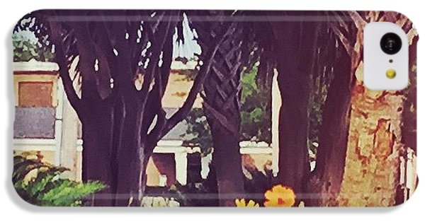 Orange iPhone 5c Case - Coastal Beauty #art #msgulfcoast by Joan McCool