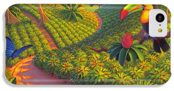 Coffee Plantation IPhone 5c Case by Robin Moline