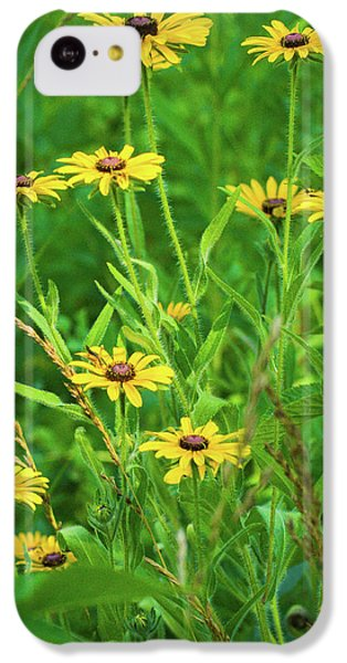 IPhone 5c Case featuring the photograph Collection In The Clearing by Bill Pevlor