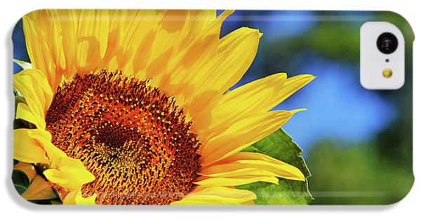 Color Me Happy Sunflower IPhone 5c Case