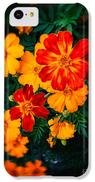 Colorful Flowers IPhone 5c Case by Silvia Ganora