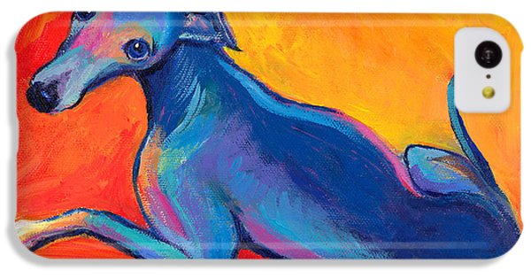 Colorful Greyhound Whippet Dog Painting IPhone 5c Case by Svetlana Novikova