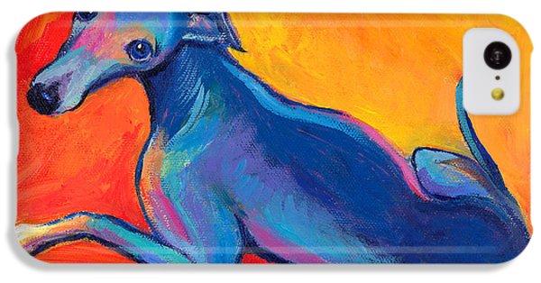 Colorful Greyhound Whippet Dog Painting IPhone 5c Case by Svetlana Novikova