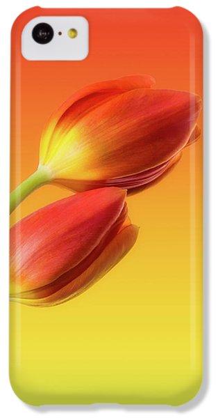 Tulip iPhone 5c Case - Colorful Tulips by Wim Lanclus