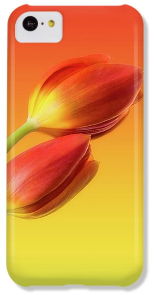 Tulip iPhone 5c Case - Colorful Tulips by Wim Lanclus