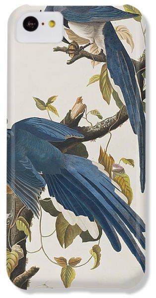 Bluejay iPhone 5c Case - Columbia Jay by John James Audubon