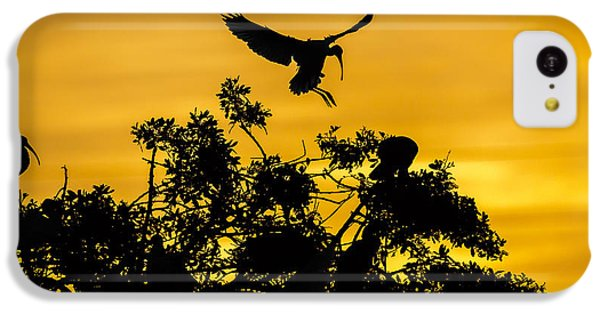 Ibis iPhone 5c Case - Coming Home by Mike Lang