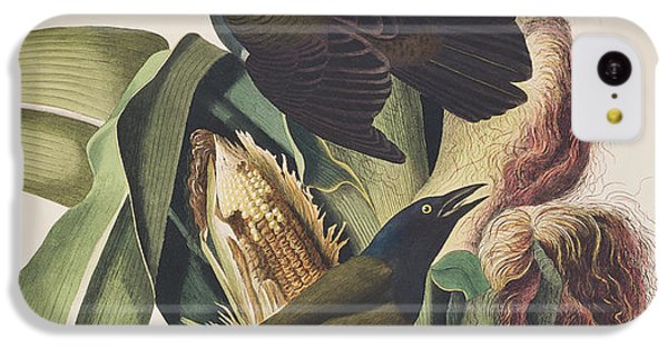 Common Crow IPhone 5c Case by John James Audubon
