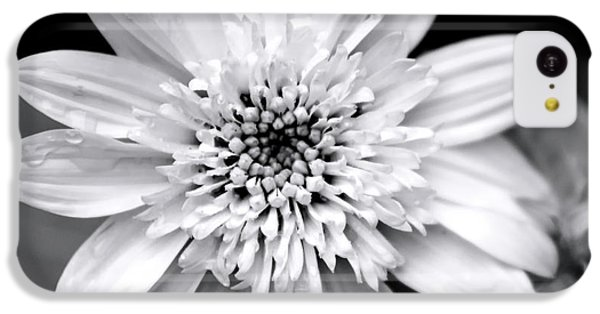 IPhone 5c Case featuring the photograph Coreopsis Flower Black And White by Christina Rollo