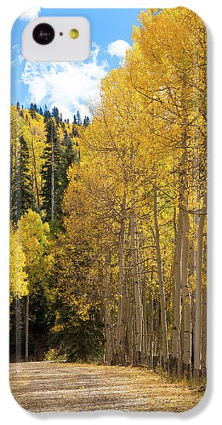 Country Roads IPhone 5c Case by David Chandler