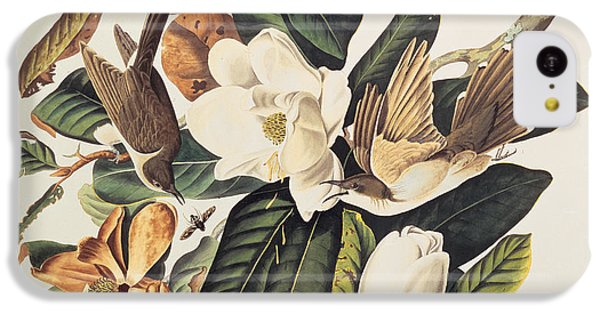 Cuckoo iPhone 5c Case - Cuckoo On Magnolia Grandiflora by John James Audubon