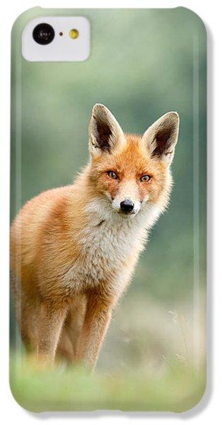 Curious Fox IPhone 5c Case