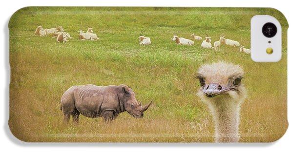 Ostrich iPhone 5c Case - Curious Ostrich And White Rhino by Tom Mc Nemar