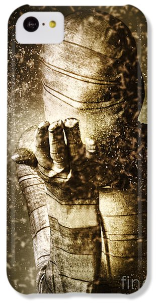 Curse Of The Mummy IPhone 5c Case