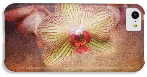 Cymbidium Orchid IPhone 5c Case by Tom Mc Nemar