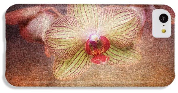 Cymbidium Orchid IPhone 5c Case by Tom Mc Nemar