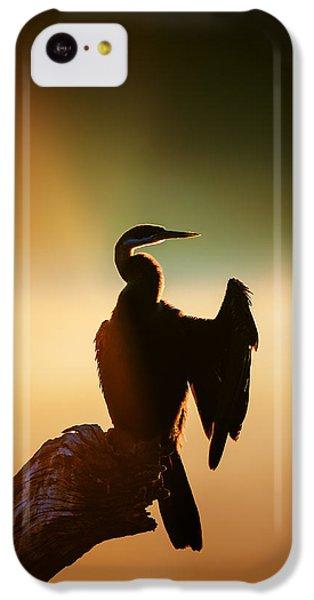 Anhinga iPhone 5c Case - Darter Bird With Misty Sunrise by Johan Swanepoel