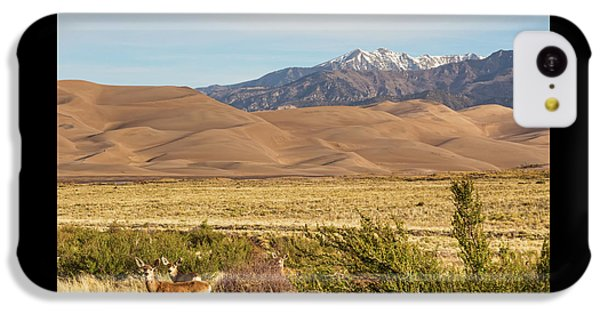 IPhone 5c Case featuring the photograph Deer And The Colorado Sand Dunes by James BO Insogna