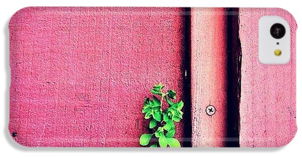 Green iPhone 5c Case - Determination by Julie Gebhardt