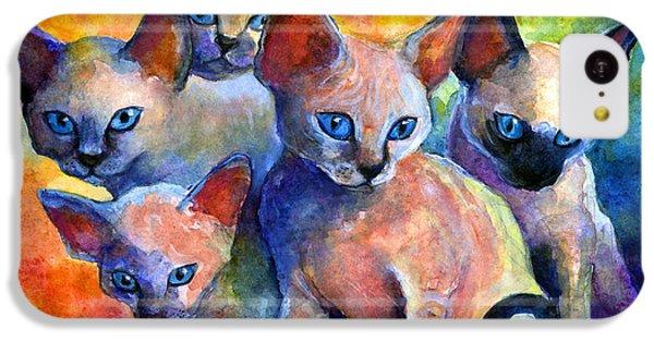 Devon Rex Kitten Cats IPhone 5c Case by Svetlana Novikova