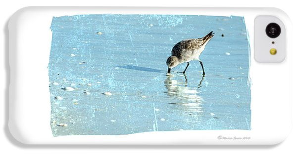 Sandpiper iPhone 5c Case - Dig In by Marvin Spates