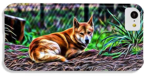 Dingo From Ozz IPhone 5c Case by Miroslava Jurcik